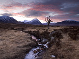 Winter View of Rannoch Moor at Sunset, Near Fort William, Scotland Fotografisk tryk af Lee Frost