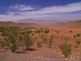 Desert Landscape Near Tafraoute, Morocco, North Africa, Africa Photographic Print