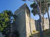 Pisana Fortress, Marciana, Isola D'Elba, Elba, Tuscany, Italy, Europe Photographic Print