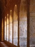 Thoronet Abbey Cloister, Thoronet, Var, Provence, France, Europe Photographic Print