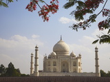 Taj Mahal, UNESCO World Heritage Site, Agra, Uttar Pradesh, India, Asia Photographic Print by Ian Trower