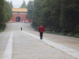 Ming Xiaoling, Ming Dynasty Tomb, Zijin Shan, Nanjing, Jiangsu, China Photographic Print by Ian Trower