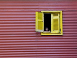 Child at a Window, La Boca, Buenos Aires, Argentina, South America Photographic Print by Thorsten Milse