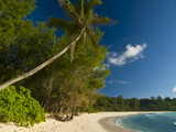 Beach of Anse Cocos, La Digue, Seychelles, Indian Ocean, Africa Photographic Print