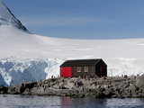 Penguin Colony, English Research Station, Port Lockroy, Antarctic Peninsula Photographic Print by Thorsten Milse