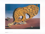 R&#228;tsel der Begierde Posters by Salvador Dal&#237;