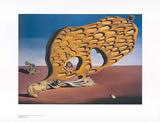 Rätsel der Begierde Art by Salvador Dalí