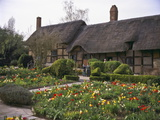 Anne Hathaway's Cottage, Birthplace and Childhood Home of Shakespeare's Future Wife, England Photographic Print