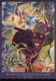 Black Jaguar Prints by Joan Hansen