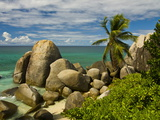 Granite Rocks and Palm Trees, Mahe, Seychelles, Indian Ocean, Africa Photographic Print