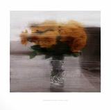 Rosen Lámina coleccionable por Gerhard Richter