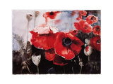 Mohn 2243 Prints by Gisela Maack