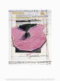 Surrounded Islands, Miami I Kunstdrucke von  Christo