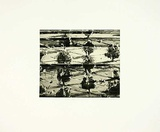 Paysage arboré II Edition limitée par Heike Negenborn