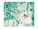 Amazonas 3, c.2007 Begränsad utgåva av Reinhard Stangl