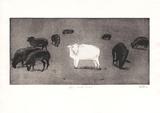 Das weiße Schaf Limited Edition by Bernd Baldus