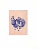 Eichhörnchen Blau/Altrosa Collectable Print by Albrecht Dürer