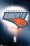 Bobcats - Logo 11 Photo