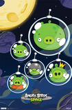 Angry Birds Space Prints