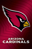 Arizona Cardinals Logo Bilder