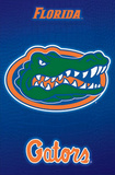 Florida Gators Logo NCAA Print