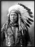Sioux Brave, C1900 Posters by John Alvin Anderson