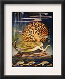 Andersen: Little Mermaid Framed Giclee Print by Jennie Harbour