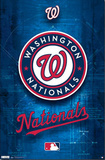 Washington Nationals Logo 2011 Prints