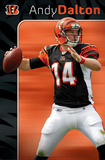 Cincinnati Bengals Andy Dalton Posters