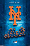 New York Mets Logo 2011 Print