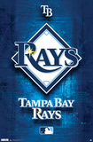 Tampa Bay Rays Logo 2011 Sports Poster