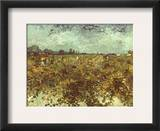 Van Gogh: Vineyard, 1888 Framed Giclee Print by Vincent van Gogh