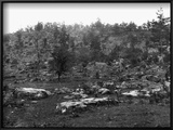 Little Round Top Prints by Jan Havicksz. Steen