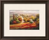 Vineyard View I Prints by Roberto Lombardi