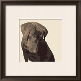 Chocolate Labrador Prints by Emily Burrowes
