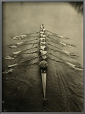 Rowing Team, C1913 Posters