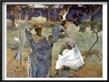 Gauguin: Martinique, 1887 Prints by Paul Gauguin