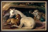 The Arab Tent, 1866 Gerahmter Giclée-Druck von Edwin Henry Landseer