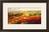 Red Poppy Panorama Print by Roberto Lombardi