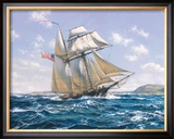Lynx U.S. Privateer Framed Giclee Print by Roy Cross