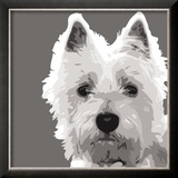 West Highland Terrier Posters by Emily Burrowes