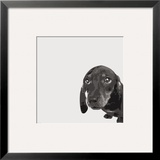 Dachshund Prints by Emily Burrowes