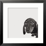 Dachshund Kunst von Emily Burrowes