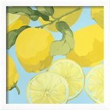 Fresh Lemons Print by Martha Negley
