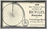 Bicycles, Tricycles, and Velocipedes Print