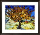 Maulbeerbaum, ca. 1889 Gerahmter Giclée-Druck von Vincent van Gogh