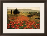 Hills of Tuscany I Framed Giclee Print by Steve Wynne