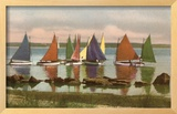 Rainbow Fleet, Nantucket, Massachusetts Framed Giclee Print