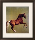 Whistlejacket, 1762 Framed Giclee Print by George Stubbs