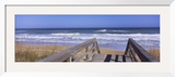Playlinda Beach, Canaveral National Seashore, Titusville, Florida, USA Framed Photographic Print by  Panoramic Images